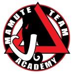 Academia Mamute Team
